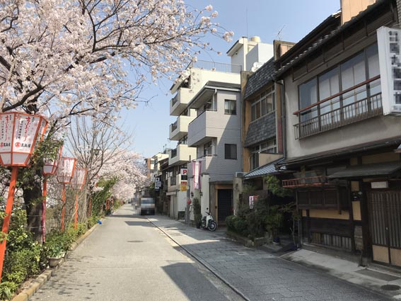 京都 祇園 宮川町『京町家』売り物件!!