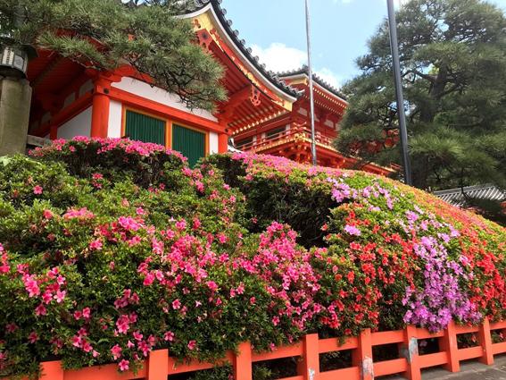 京阪三条駅から広がる黄金ルート!!南禅寺から八坂神社・高級賃貸マンション