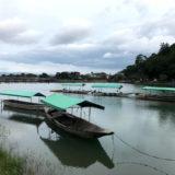 京都 嵐山の新たな美術館(仮称)ay-museum project と 10/3オープン『嵐山 みっふぃー桜きっちん』