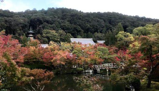 紅葉が始まる永観堂(禅林寺)と哲学の道