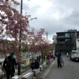 関西初出店!!「MERCER BRUNCH TERRACE HOUSE KYOTO」4月グランドオープン!!  & ヒューリックのホテル/ザ・ゲート立誠京都(仮称)